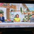 広島テレビ・テレビ派「沿線遺産」放映