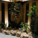 階段踊り場の植栽