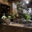 地下の植栽